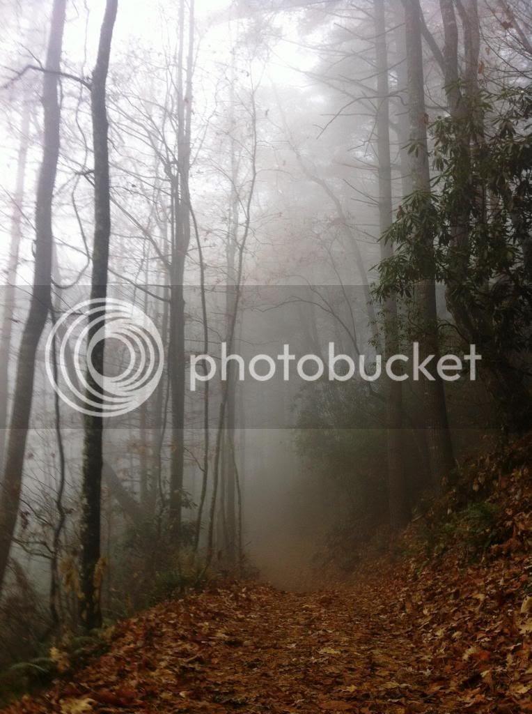 North Carolina Hike photo IMG_1292_zps4c82e1af.jpg