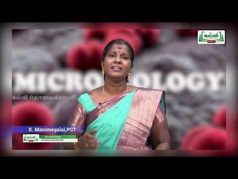 12th நுண்ணுயிரியல் வேதியியல் முறையில் இயல் 3 Kalvi TV