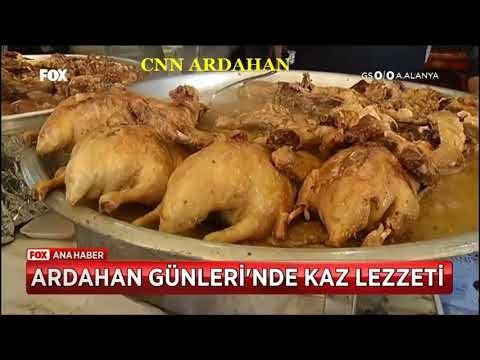 ardahan tanıtım günleri istanbul maltepe