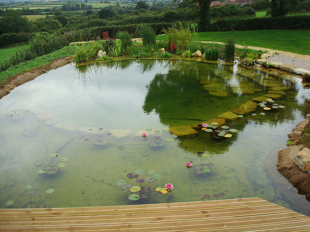 Natural Swimming Pools Warwickshire Swimming Pond Design Staffordshire Eco Pools Warwickshire Water Garden Design Staffordshire Aqua Landscape Design