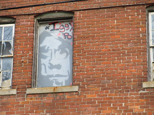 Iggy Pop Window