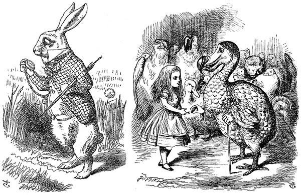 RabbitandDodosidebyside.jpg