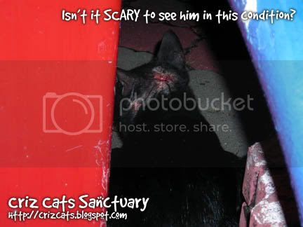 SCARY02