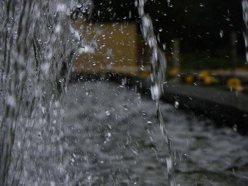 Chicago Botanic Garden - WATER (5)