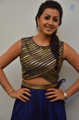 Nikki Galrani New Gallery - 15 of 30
