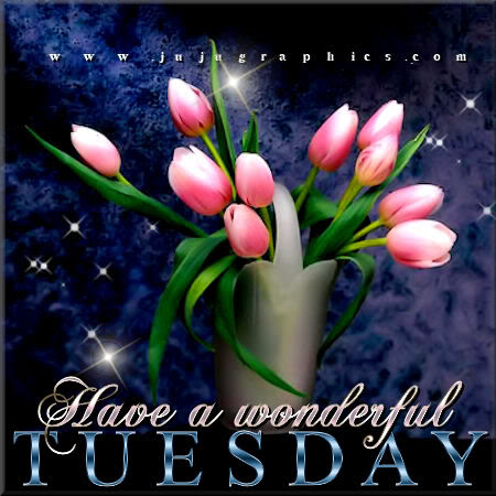 Have A Wonderful Tuesday 21 Graphics Quotes Comments Images