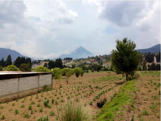 Sta. Maria Volcano, Xela