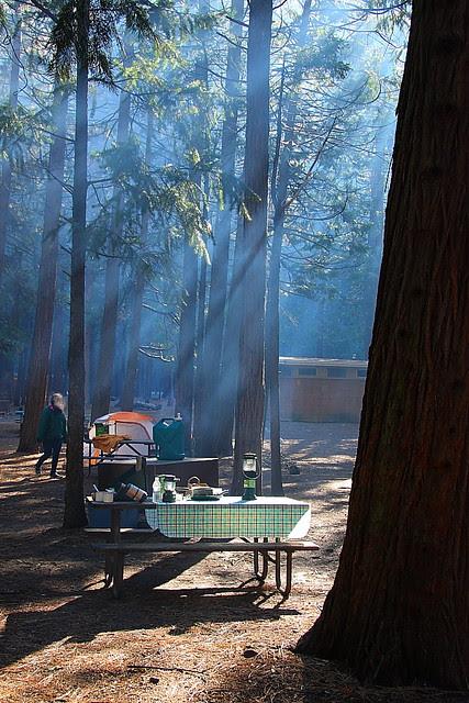 IMG_9875 Camping