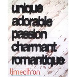 Acrylique - minis mots St-Valentin noir