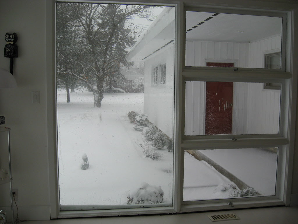 Snow - Feb 2010