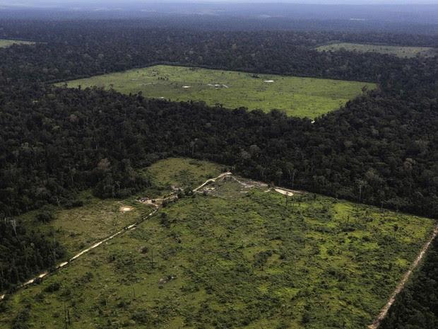 Recortes de desmatamento feitos para uso na agricultura perto de Santarém (PA). Os fotógrafos Nacho Doce e Ricardo Moraes, da agência Reuters, viajaram pela Amazônia registrando várias formas de desmatamento. Foto de 20/4/2013. (Foto: Nacho Doce/Reuters)