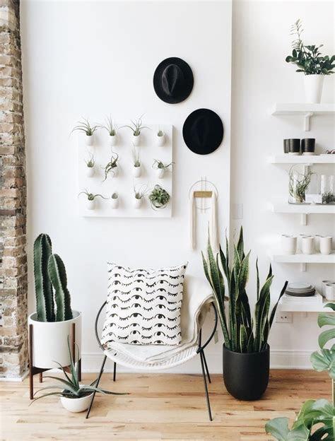 ideas  store interior design  pinterest