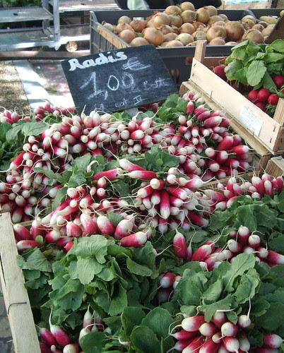 Radishes at the Carcassonne Market