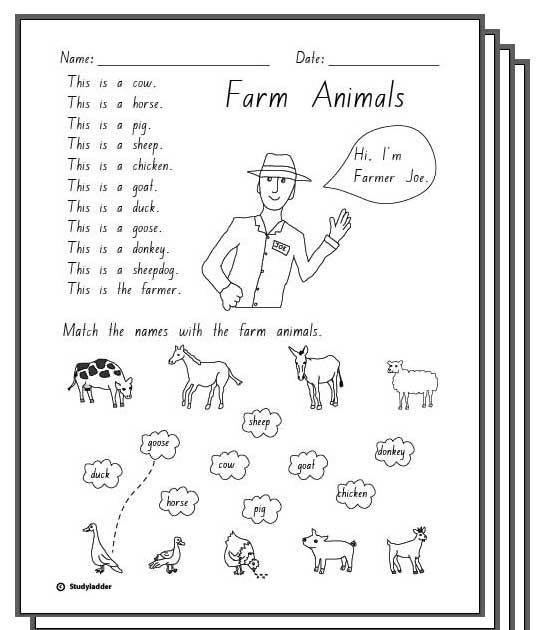 animal worksheet new 192 animal responses worksheet. Black Bedroom Furniture Sets. Home Design Ideas