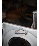 Quot Genuine Quot Oem Appliance Parts