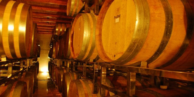 Winery in Israel. (Photo: Ministry of Foreign Affairs)