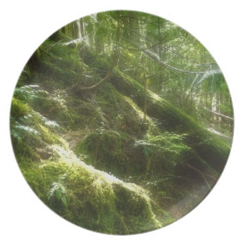 Mossy Forest in Sunlight Nature-lovers Plate plate