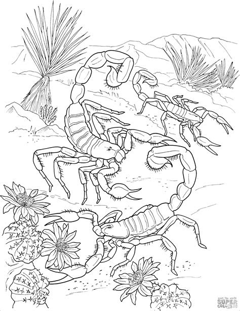 tiger dangerous animals coloring page coloringbay
