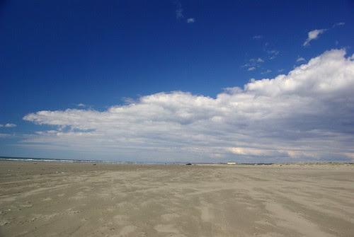 2009-04-30 Ocean Shores Beach (96)