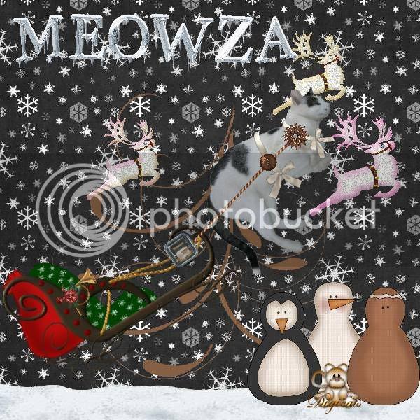 Domestic Cat,Winter,Catblogosphere Cats,Snowmen