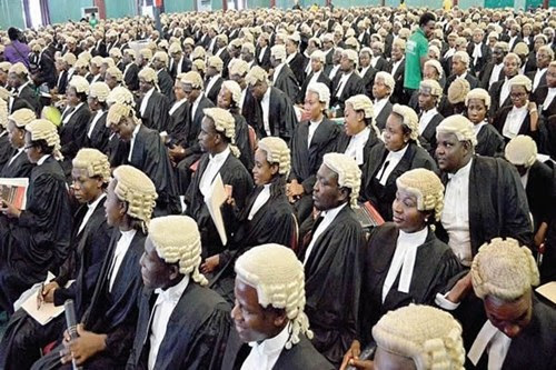 Image result for law student in nigeria