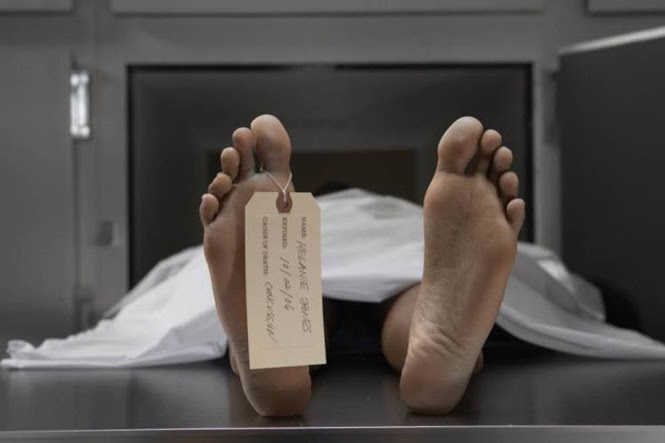 Você sabe o que acontece com o corpo após a morte?