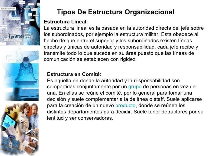 Ejemplo De Una Estructura Lineal De Una Empresa Ejemplo