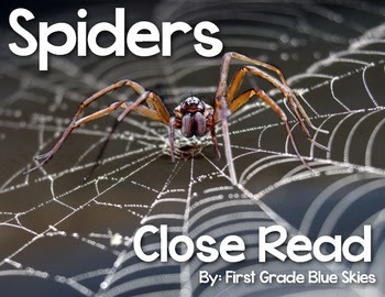 Spiders Close Read