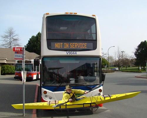 bernie bus crop2