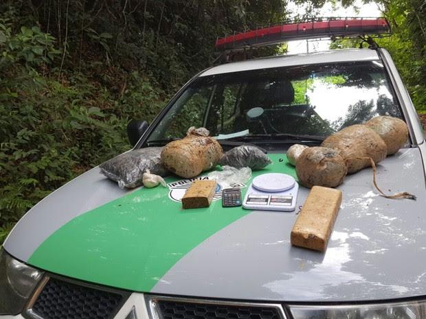 Polícia Ambiental encontrou drogas e armadilhas em mata de Registro, SP (Foto: Divulgação/Polícia Ambiental)