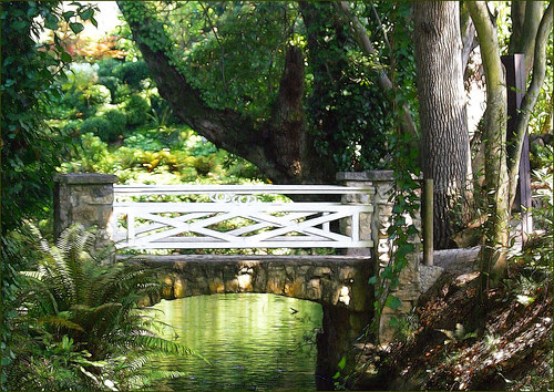 un puente