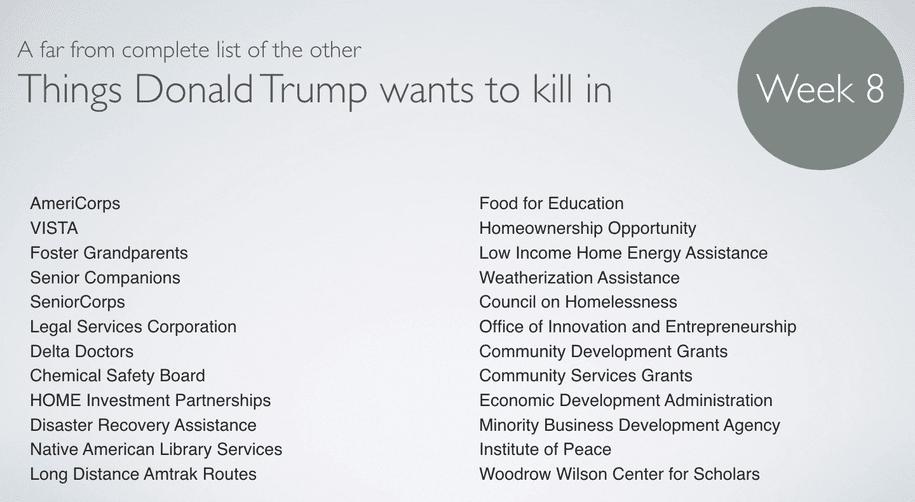 Donald Trump Week 8