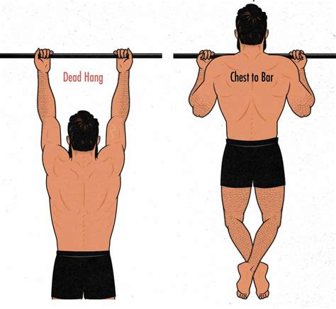 chin ups  curls  biceps growth outlift