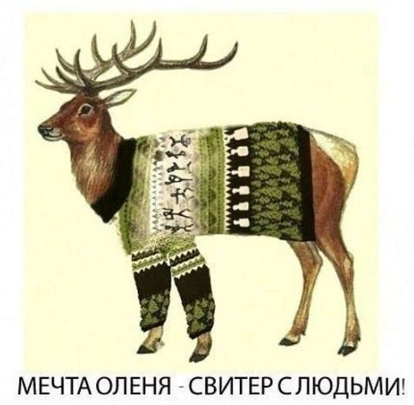 http://secondstreet.ru/uploads/images/01/02/02/2013/12/11/mechta-olenya.jpg