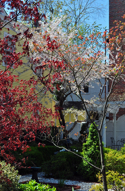 Middle St. Garden