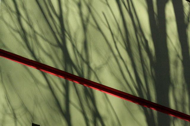 shadows, burnside