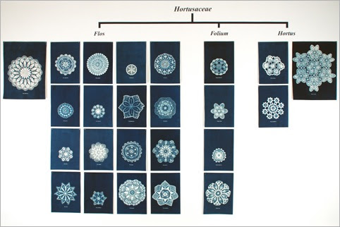 Hortusaceae-ed1