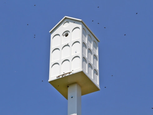 beehive, honey bee, public sculpture, bee hive, honeybee, public beehive, pollination, deep ecology