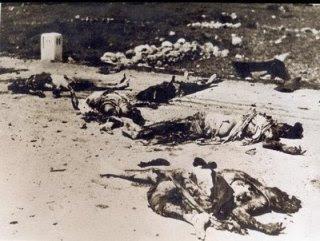 《还原五一三真相第一章:种族大屠杀,谁是真凶?》 - 正义之声博客 - 正义之声博客