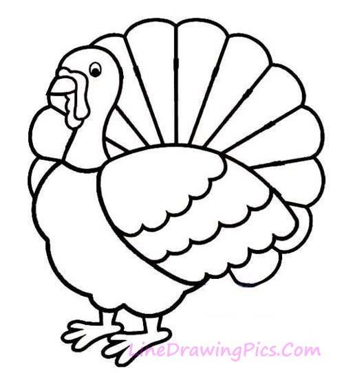 火鶏のイラストの簡単な書き方 簡単な絵の描き方