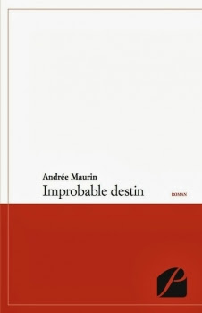 Couverture Improbable destin