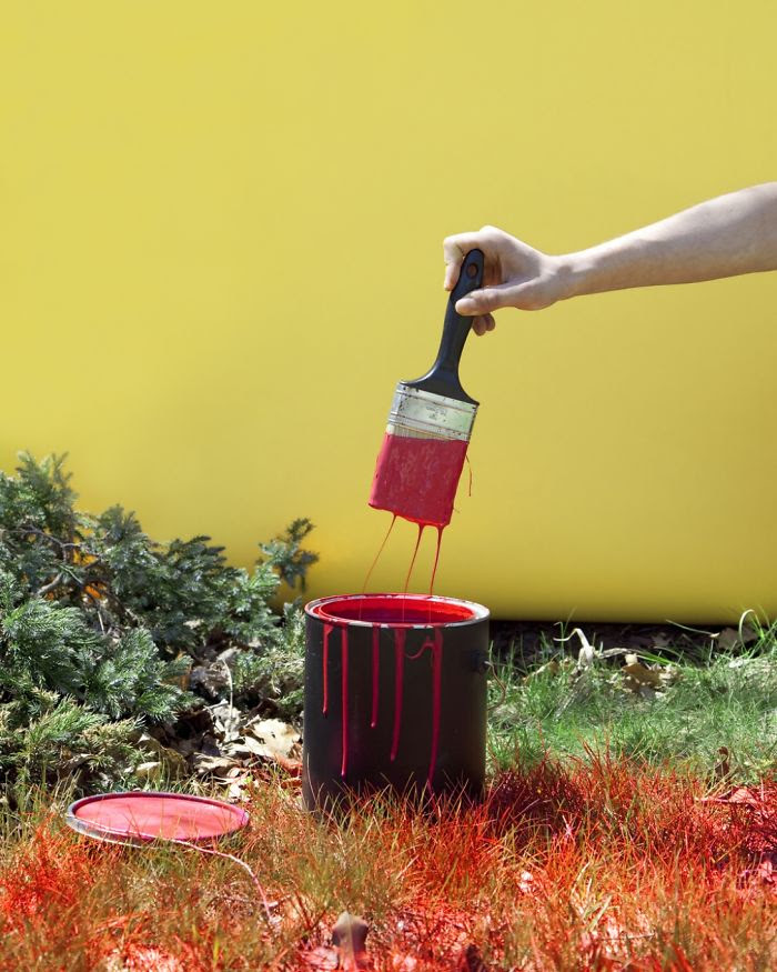 In Kentucky It's Illegal To Paint Your Lawn Red