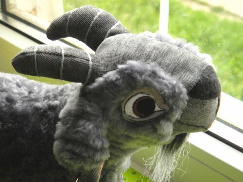 коза джали