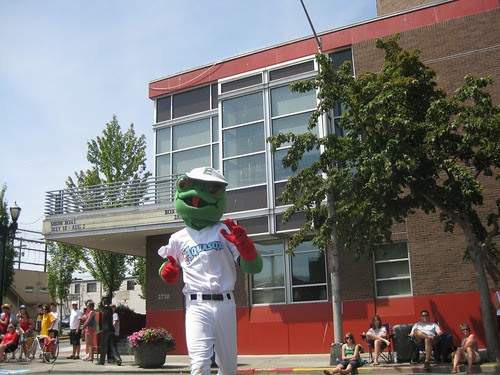 Aquasox Froggy