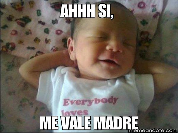 Memes De Me Vale Imagenes Chistosas