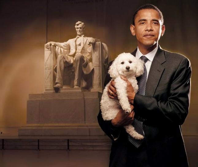 http://thescallion.files.wordpress.com/2009/08/obama-puppy.jpg