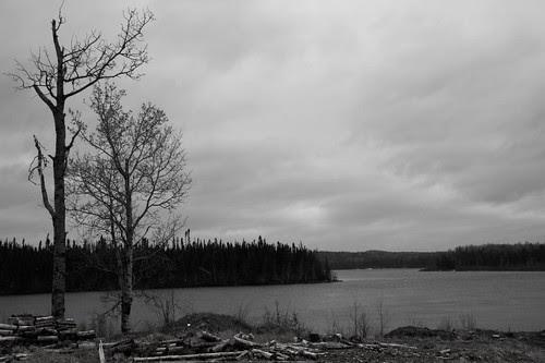 William Gull : Photo hike