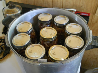 Jars of Bacon Pieces in Pressure Canner