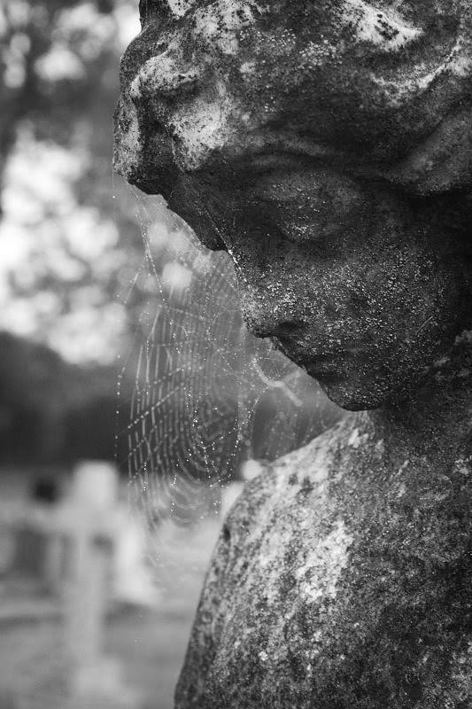 Statue and cobweb