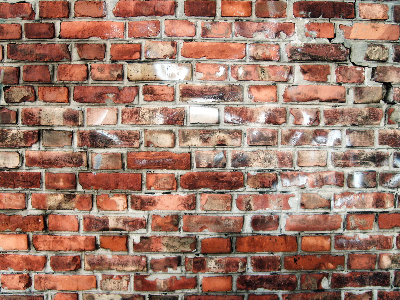 File:Brick wall in Flemish bond.jpg  Wikimedia Commons